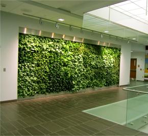 muros o paredes verdes artificiales